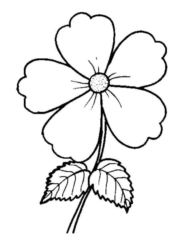 Gambar Bunga Mewarna Bermanfaat Contoh Gambar Bunga Mawar Gambar Bunga Untuk Mewarna toko Fd