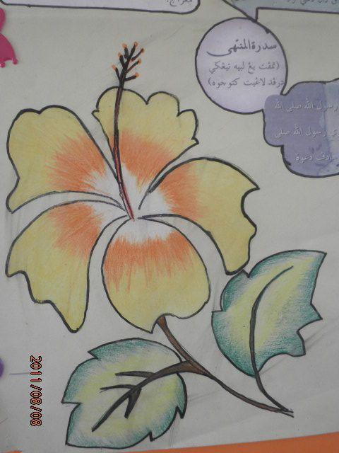 Download Cepat Bermacam Contoh Gambar Bunga Raya Mewarna Yang Menarik Dan Boleh Di Download Dengan Mudah Gambar Mewarna