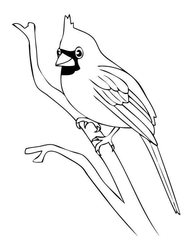 Link Download Bermacam Contoh Gambar Burung Hantu Untuk Mewarna Yang