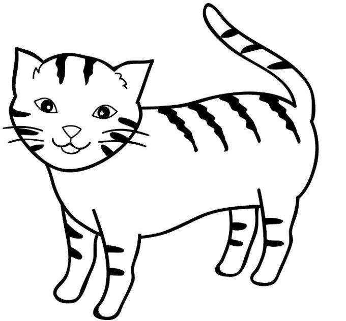 Unduh 93+ Gambar Kucing Gampang Paling Bagus Gratis