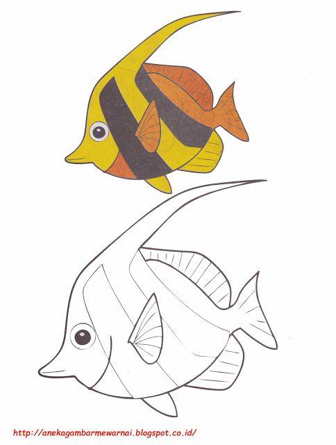 aneka gambar mewarnai gambar mewarnai ikan bendera untuk anak paud dan tk mewarnai gambar ikan bendera