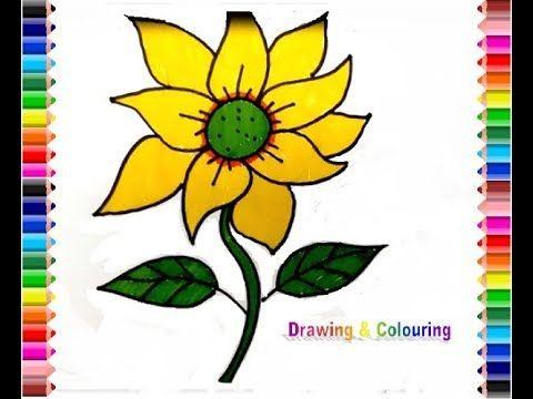 how to draw sun flower gambar bunga matahari