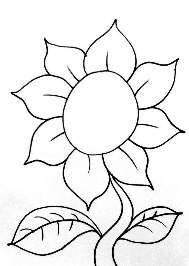 Download 4100 Koleksi Gambar Bunga Mawar Yg Mudah Ditiru HD Terbaik