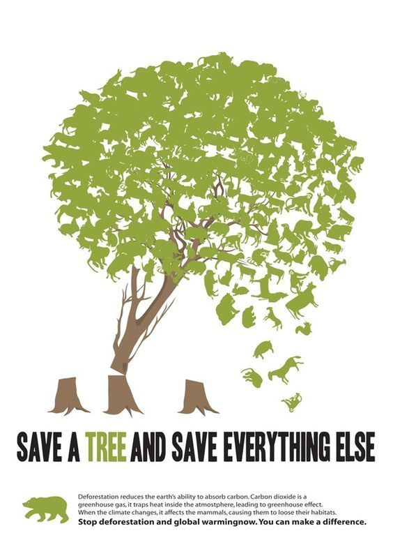 Save Earth Poster Bernilai Fight Globalwarming and Plant Tree Graphic Design Pinterest