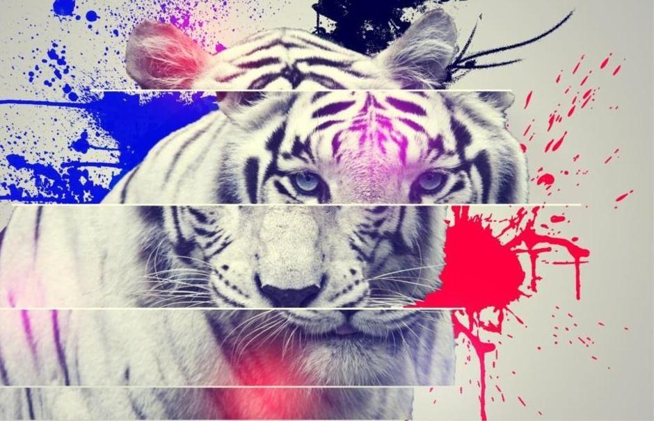 87+ Gambar Abstrak Macan