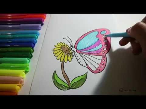 mewarnai kupu kupu dan bunga matahari