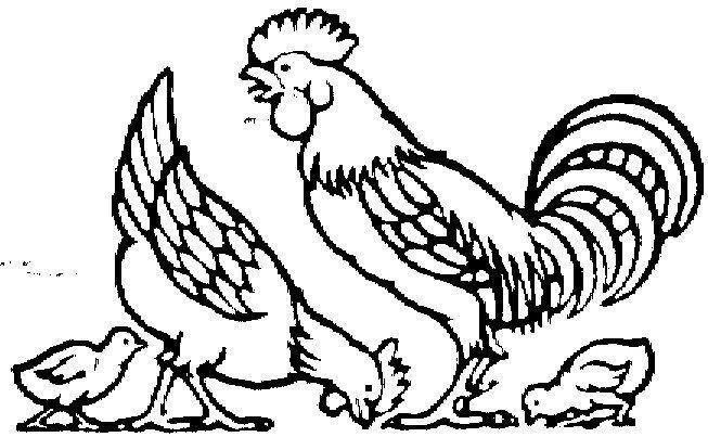 Gambar Mewarna Laut Baik Muat Turun Gambar Mewarna Ayam Yang Berguna Dan Boleh Di Dapati