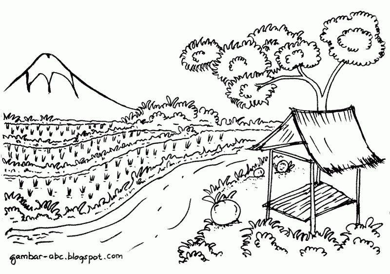gambar mewarna pemandangan gunung dan sawah padi gambar pemandangan di tepi laut