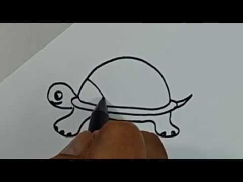 belajar cara menggambar binatang kura kura dengan mudah