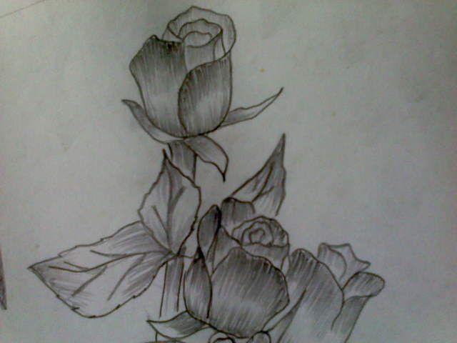 gambar mewarna bunga tulip bernilai sketsa batik bunga mawar mewarna gambar mewarna com