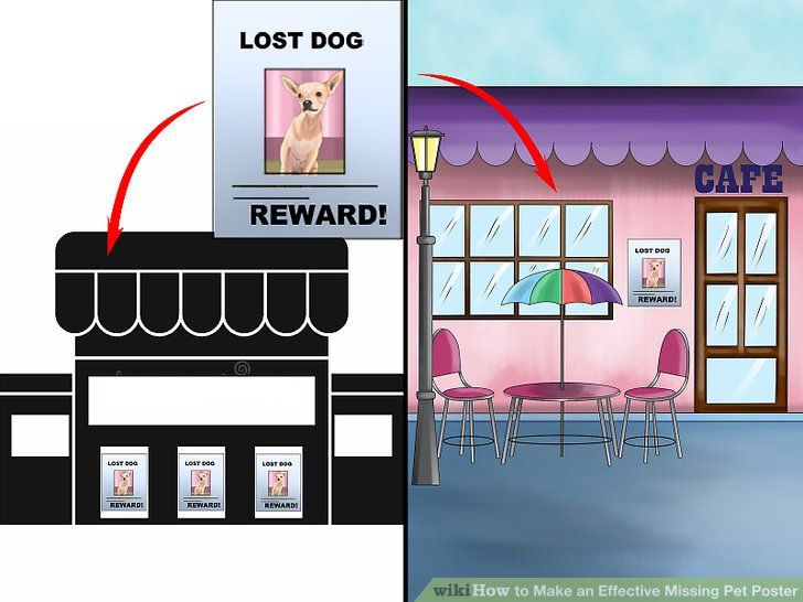 image titled make an effective missing pet poster step 14