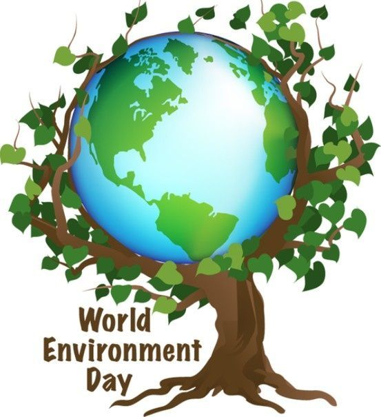 10 best world environment day posters images world environment day posters earth day activities earth day posters