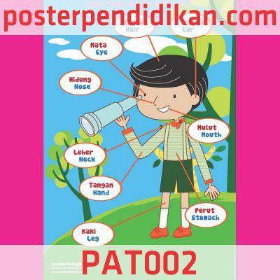 Contoh Poster Tentang Pendidikan Bermanfaat Contoh Gambar Poster Pendidikan
