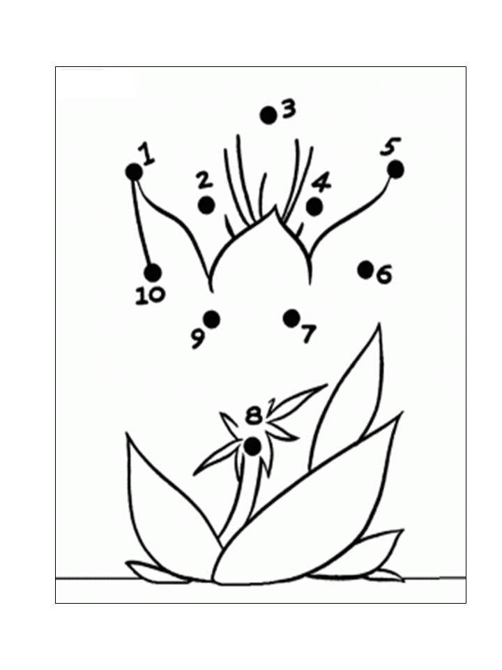 gambar mewarna bunga raya meletup aktiviti menyambung titik titik nombor menjadi gambar bunga