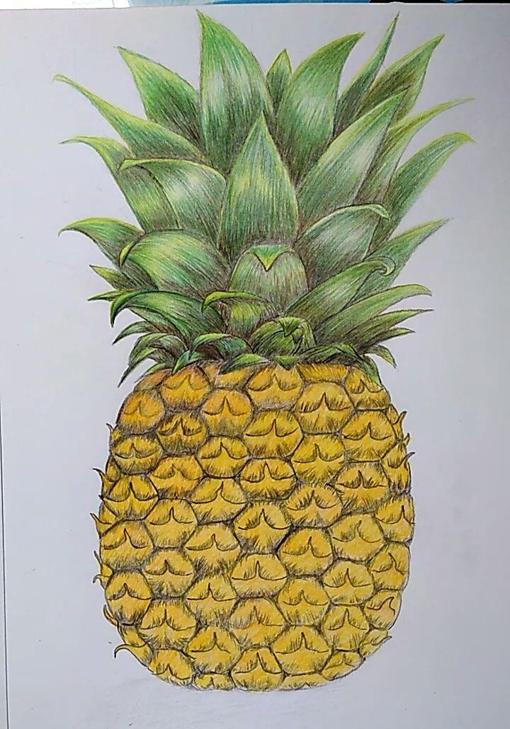 kali ini saya akan berbagi tutorial menggambar dan mewarnai buah nanas