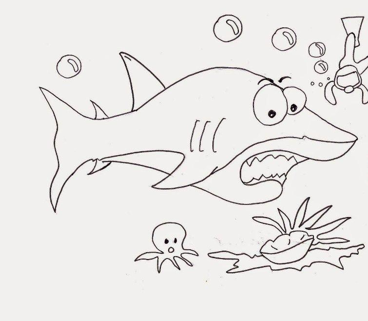 Gambar Mewarna Gambar Buah-buahan Terbaik Mewarnai Gambar Ikan Hiu