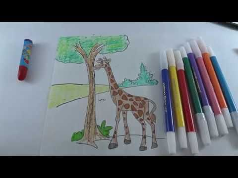 how to paint giraffe colours for kids mewarnai jerapah anak anakd d