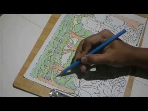 mewarnai dengan pensil warna