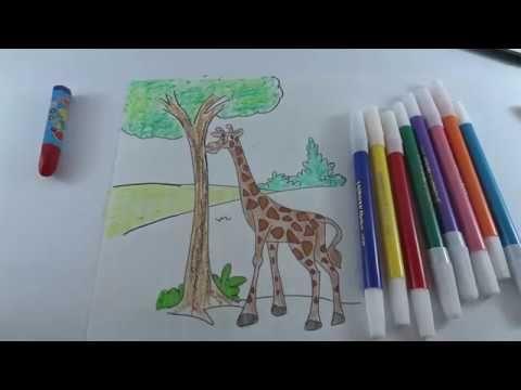 Gambar Mewarna Pensil Menarik How to Paint Giraffe Colours for Kids Mewarnai Jerapah Anak Anak
