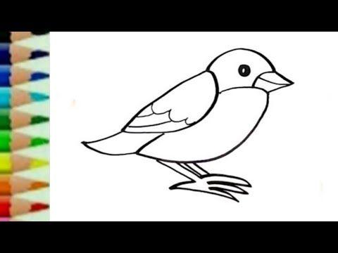 cara menggambar dan mewarnai burung untuk anak