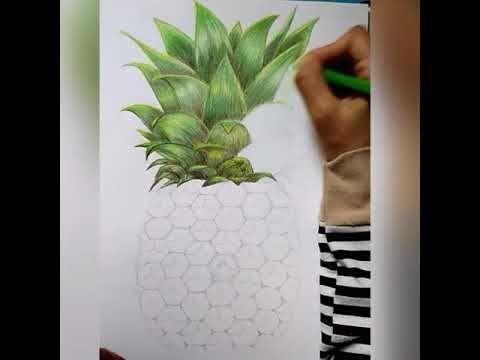 mewarnai nanas menggunakan pensil warna
