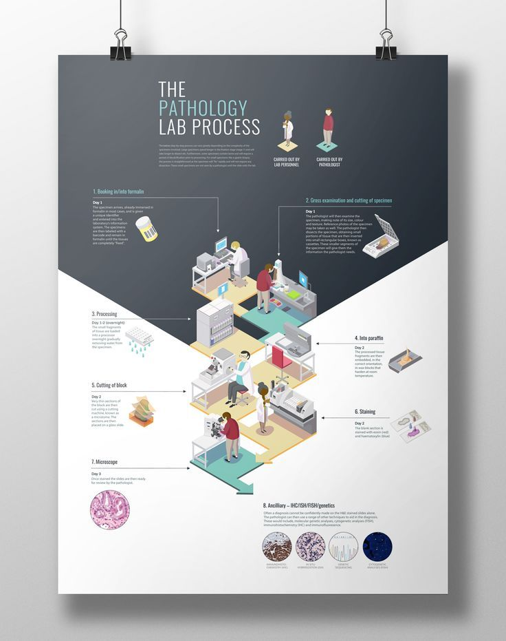 0d0e1f495b6af1a0865bbf725d693a8e process infographic poster designs jpg