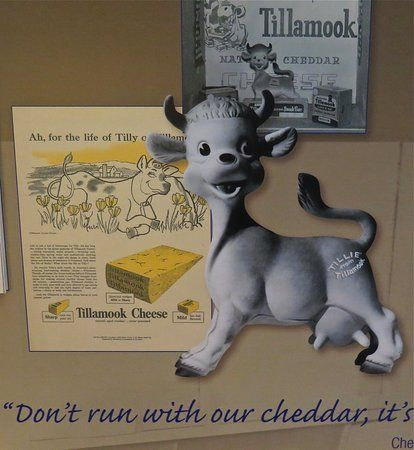 Run Poster Menarik It S Sharp Picture Of Tillamook Creamery Tillamook Tripadvisor