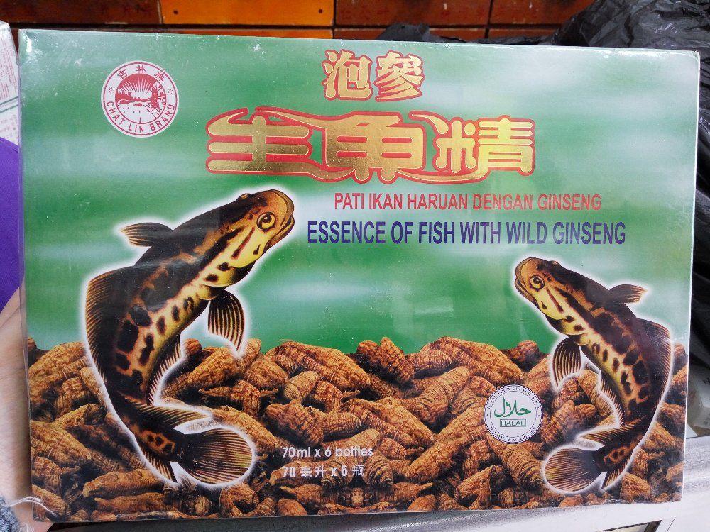 pati ikan haruan albumin ekstrak ikan kutuk gabus