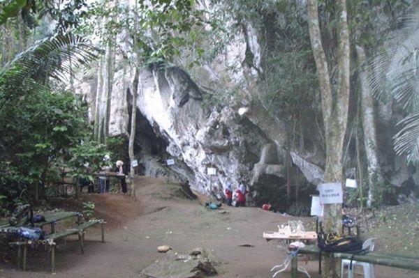 gua teluk kelawar ashx