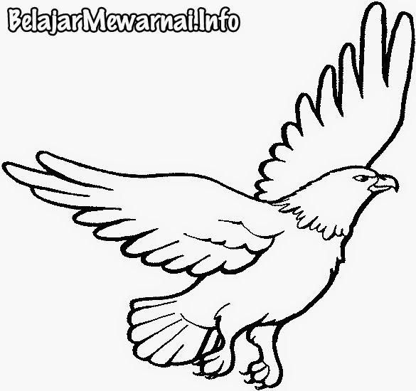 link download himpunan contoh gambar mewarna burung yang berguna dan jpg 585x550 gambar mewarnai burung