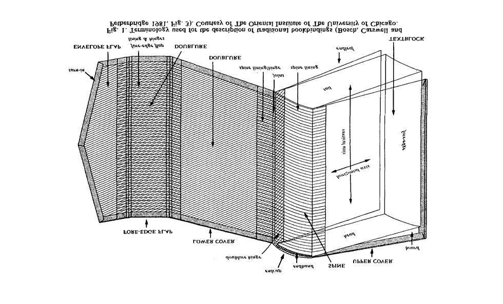 Gambar Mewarna Cencurut Kelabu Power Gambar Mewarna Archives Page 199 Of 500 Gambar Mewarna