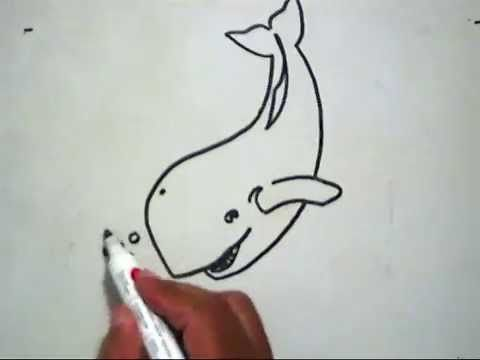 Gambar Mewarna Ikan Pari Hebat Cara Menggambar Ikan Paus How to Draw A Whale Youtube