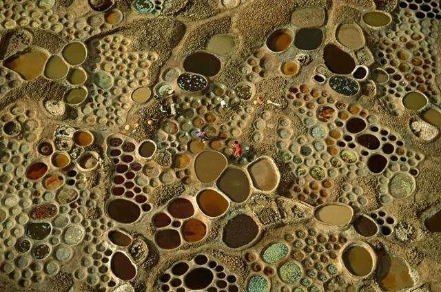 Gambar Mewarna Kelawar Ladam Bulat Penting Gambar Pemandangan Indah Dan Menakjubkan Di Afrika Edisi Akhir Zaman