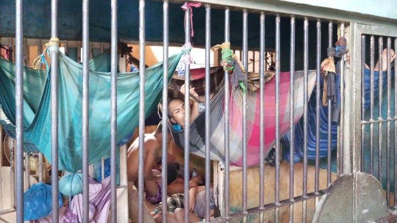 Gambar Mewarna Kelawar Malam Kecil Meletup Tahanan Tidur Bergelantungan Bak Kelelawar Salah Siapa
