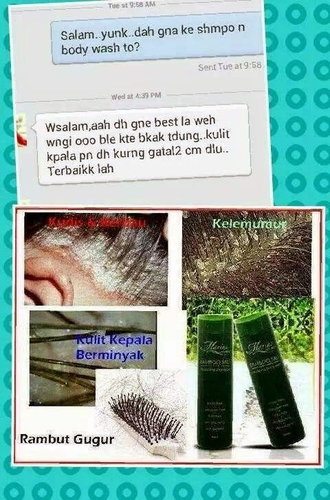 Gambar Mewarna Kelawar Tidak Berekor Malaya Power Nurul Huda Dr Nurulhuda Page 13