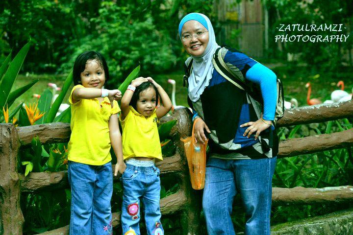 Gambar Mewarna Ular Kapak Sumatra Baik Zhr Baby N Me