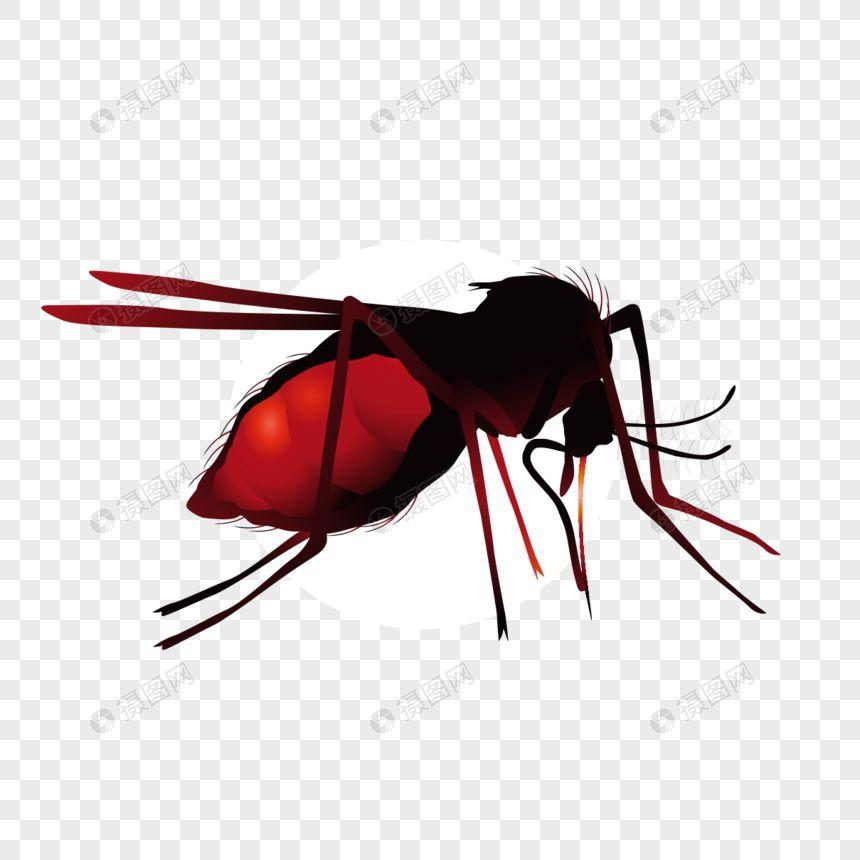 tokoh kecil nyamuk