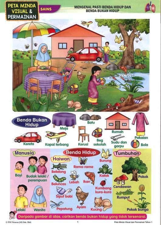 Gambar Siput Babi Power Persediaan Awal Melangkah Ke Tahun 1 Buddy Bookstore