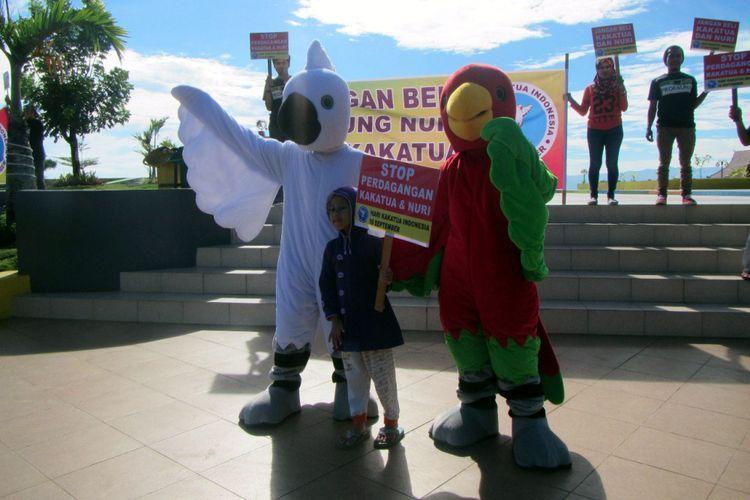 Poster Burung Raja Udang Meletup Stop Beli Burung Nuri Dan Kakatua Ini Alasannya Halaman All