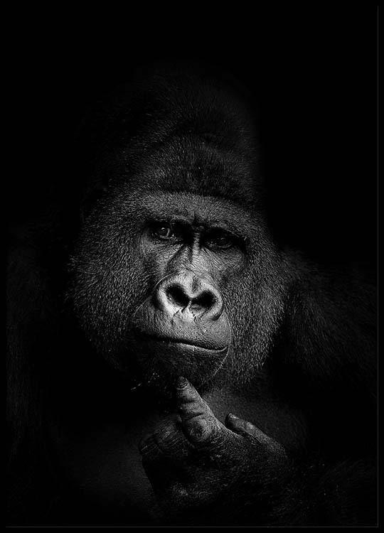 gorilla b w poster