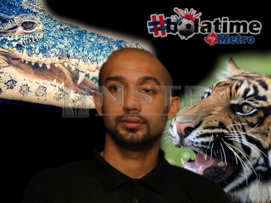 terlepas mulut harimau masuk mulut buaya