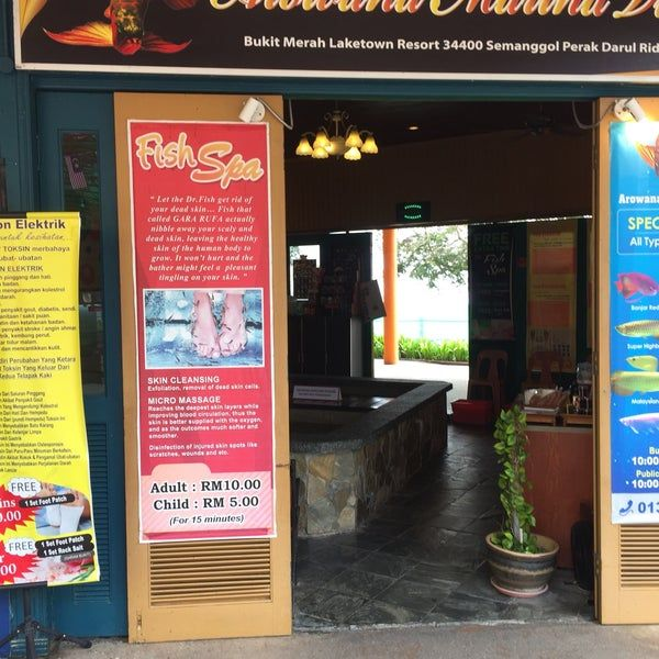 image result for fish spa bukit merah laketown