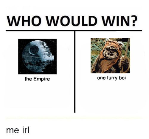 Poster orangutan Baik who Would Win the Empire One Furry Boi Empire Meme On Me Me