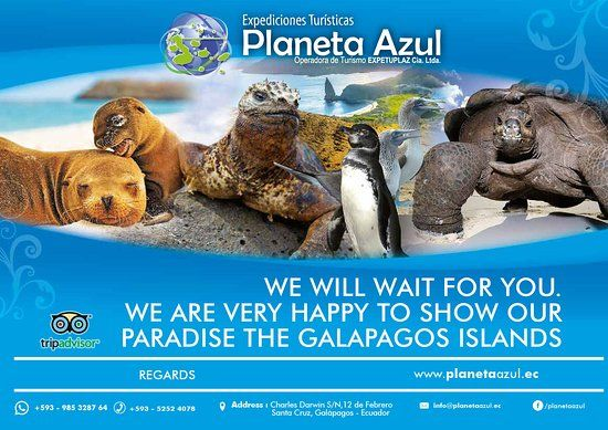 planeta azul puerto ayora june 2019 all you need to know before you go with photos tripadvisor