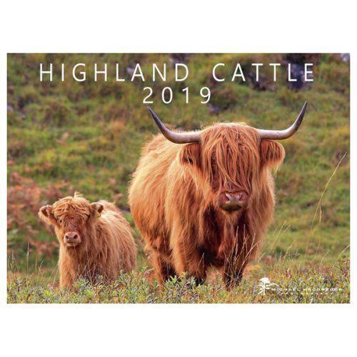 2019 calendar highland cattle michael macgregor